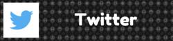 Nintheorist - Twitter