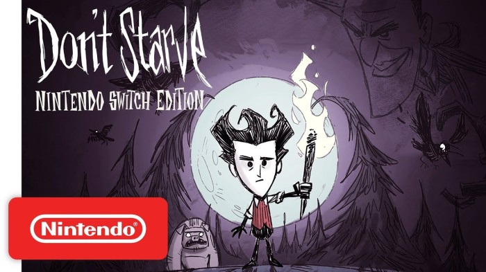DONT STARVE_NINTENDO SWITCH EDITION