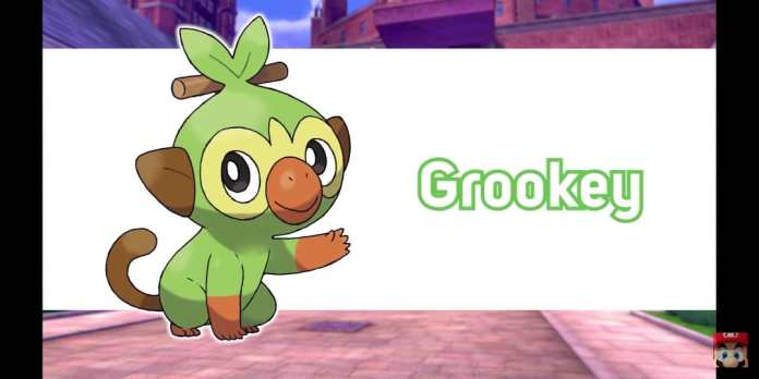 POKEMON_SWORD SHIELD_GROOKEY
