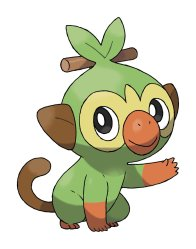 POKEMON_SWORD SHIELD_GROOKEY_ARTE